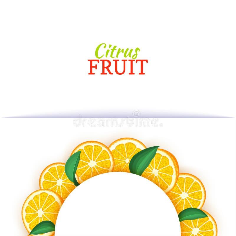 Halve cirkel wit die kader uit heerlijke tropische sinaasappelen wordt samengesteld Vectorkaartillustratie Oranje mandarin halve  stock illustratie
