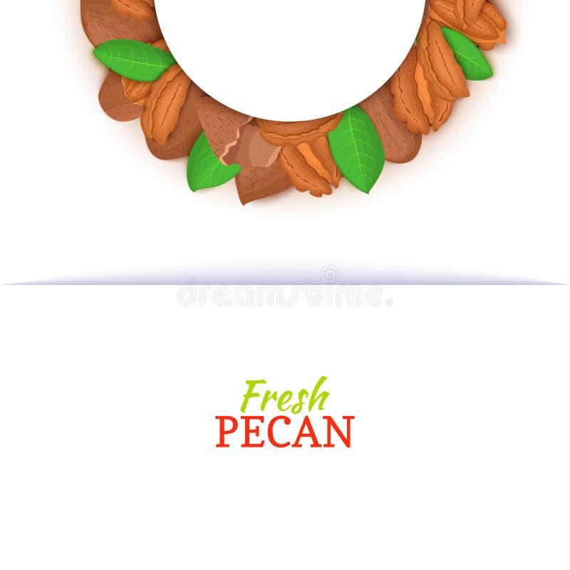 Halve cirkelkader uit pecannootnoot die wordt samengesteld Vectorkaartillustratie Het kader van de notenhazelnoot, hazelnootfruit vector illustratie