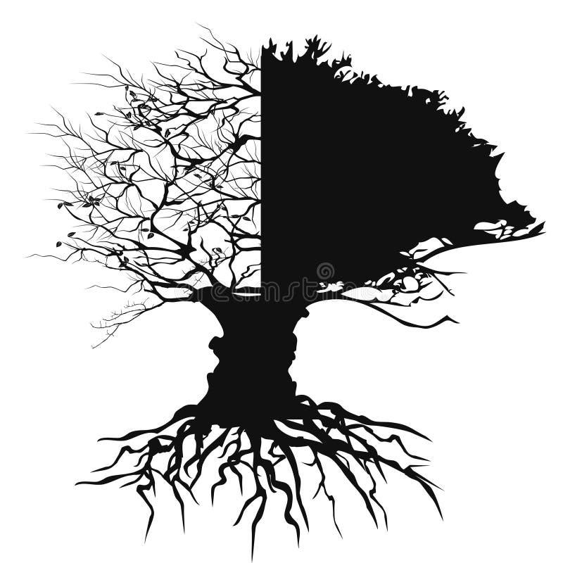 Halve de bladerenboom van de takhelft met wortelvector stock illustratie