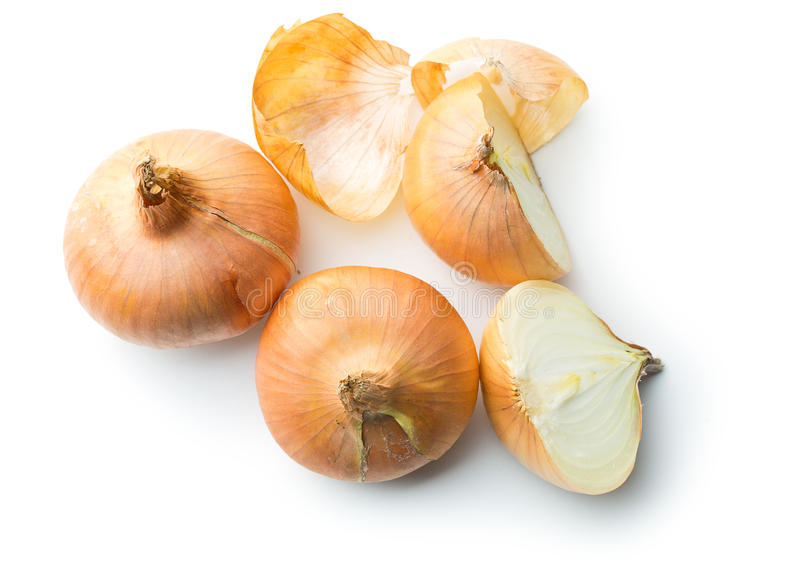 Halved fresh onion. On white background stock photo