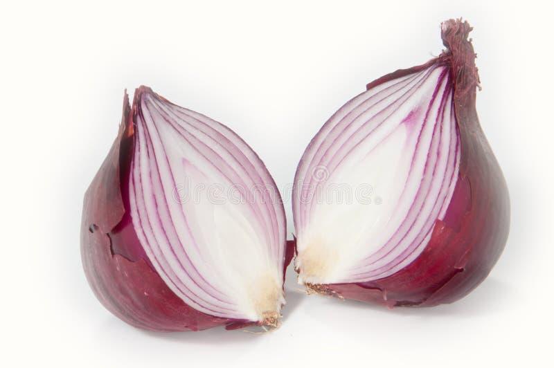 Halved onion. Isolated on white background royalty free stock photo