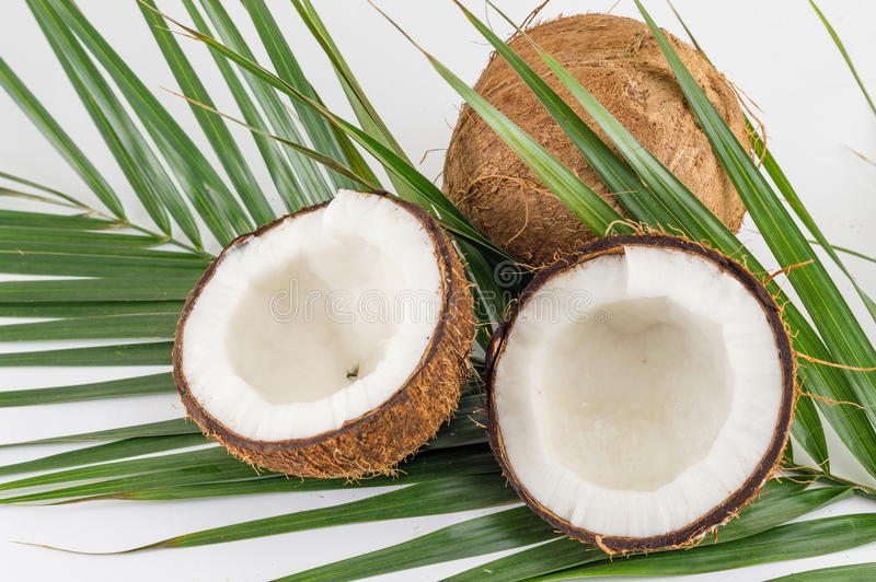Halved and whole fresh coconuts with leaves. Halved and whole fresh coconuts with coconut leaves stock image