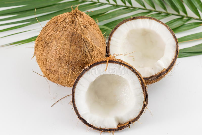 Halved and whole fresh coconuts with leaves. Halved and whole fresh coconuts with coconut leaves on white stock photos