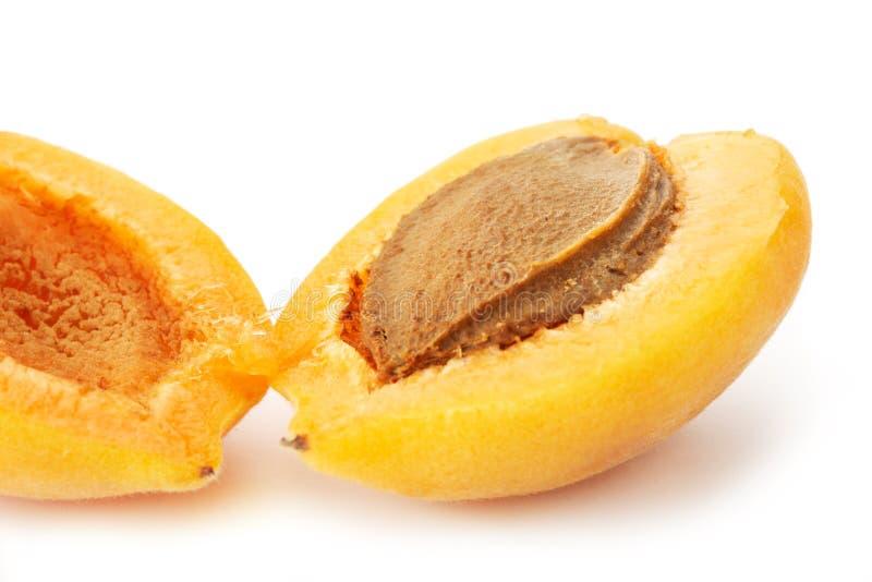 halverad aprikos arkivfoton