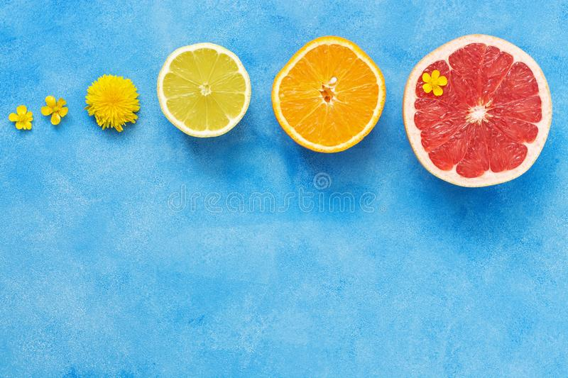 Halves of citrus fruits in a row on a blue background. Orange, lemon, grapefruit and small yellow flowers of Buttercup. The view f stock image