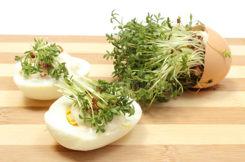 Halves of egg fresh cress royalty free stock photos