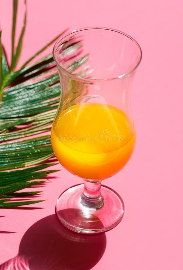 Halvfullt coctailexponeringsglas med den gröna palmbladet för ny tropisk citrusfruktfruktsaft på rosa bakgrund för moderiktig fuc arkivbilder
