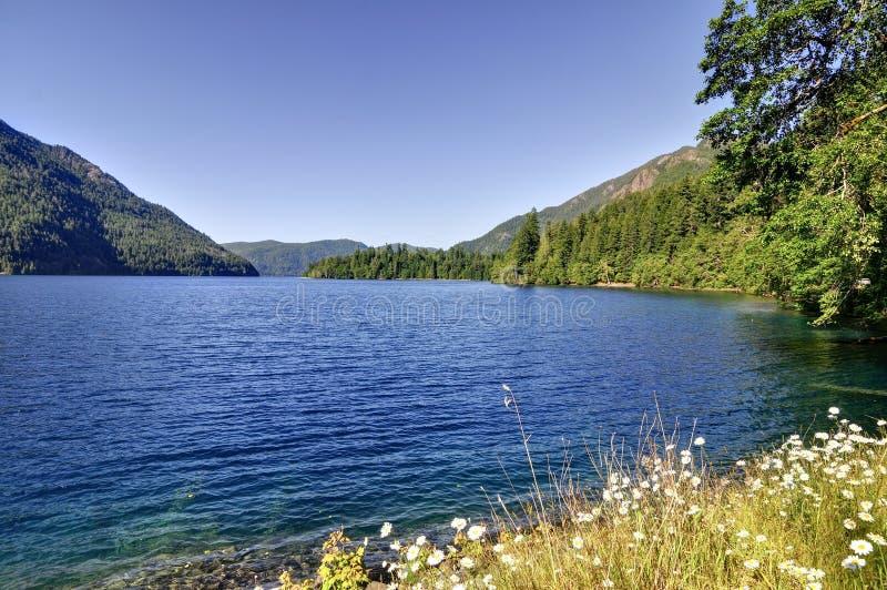 Halvmånformig Lake royaltyfria foton
