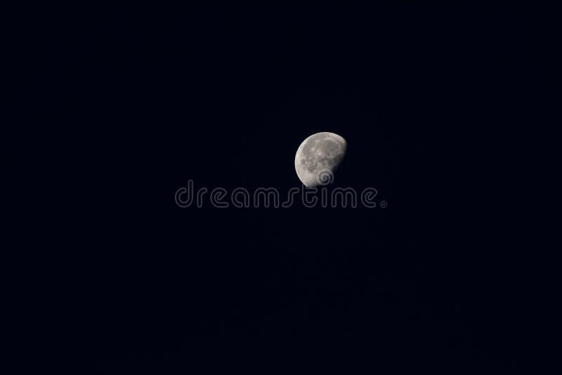 Halvmånsbakgrund Moon är en astronomisk kropp som omger jorden och är jordens enda permanenta naturliga satellit I royaltyfri fotografi