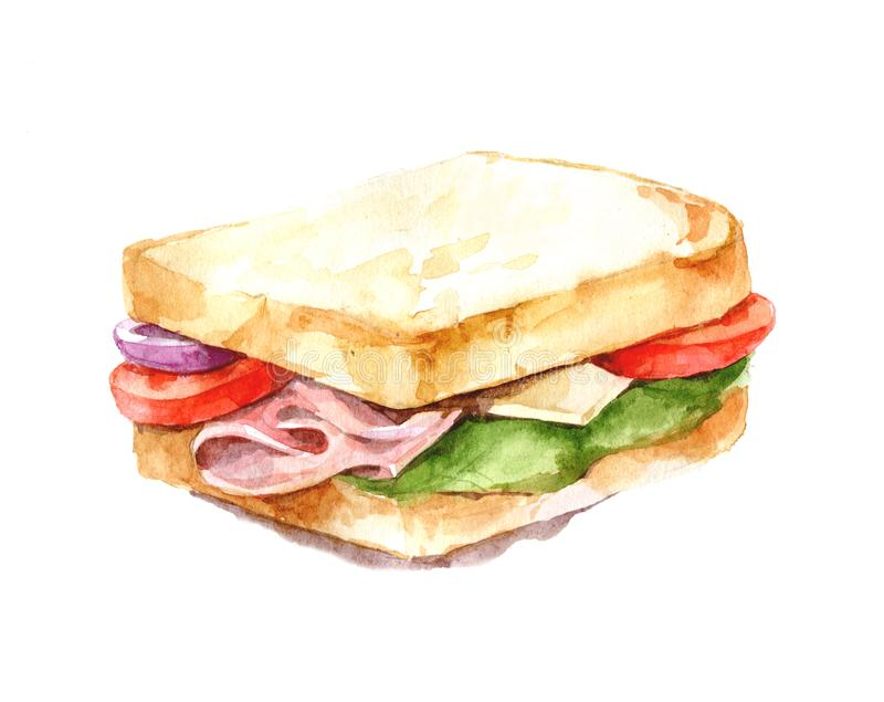 Ham, cheese and vegetable sandwich illustration. Watercolor. Isolate. vector illustration