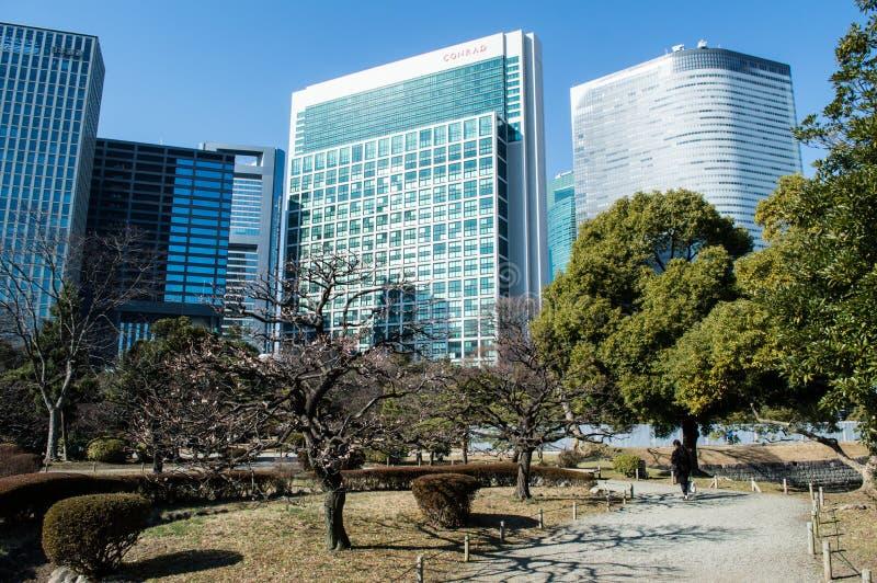 Hama Rikyu Garden a Tokyo fotografia stock