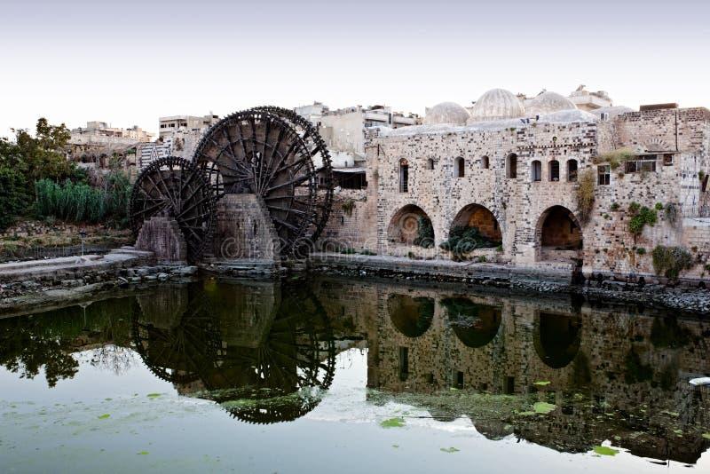 hama syria arkivbilder