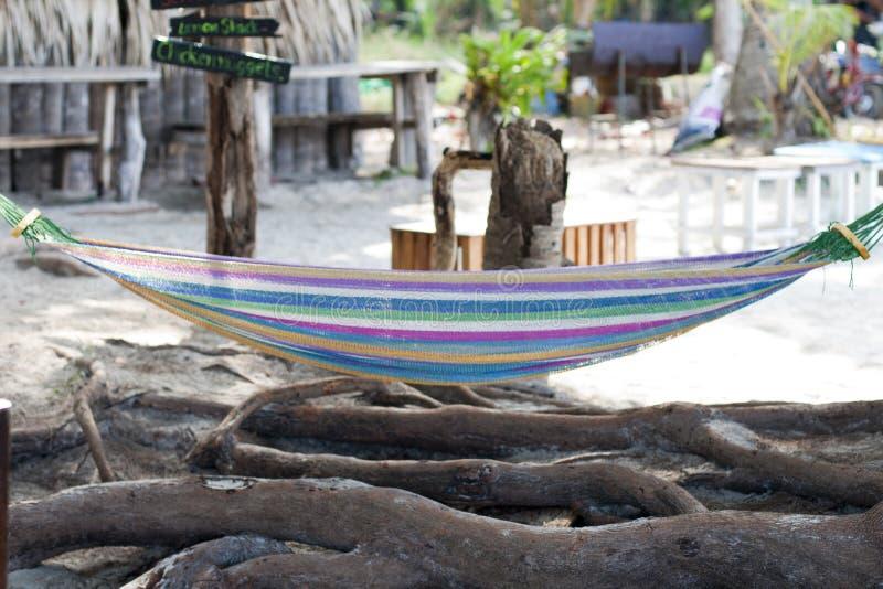 Hamac coloré lumineux au-dessus des racines d'arbre Café tropical sur le fond photos stock
