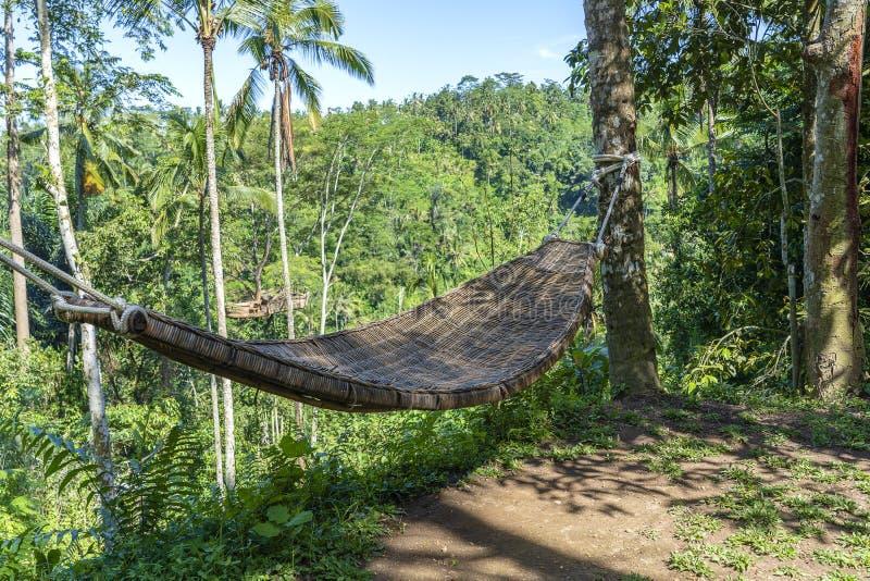Hamac en osier en bambou à côté de la jungle tropicale en île Bali, Indonésie photographie stock libre de droits