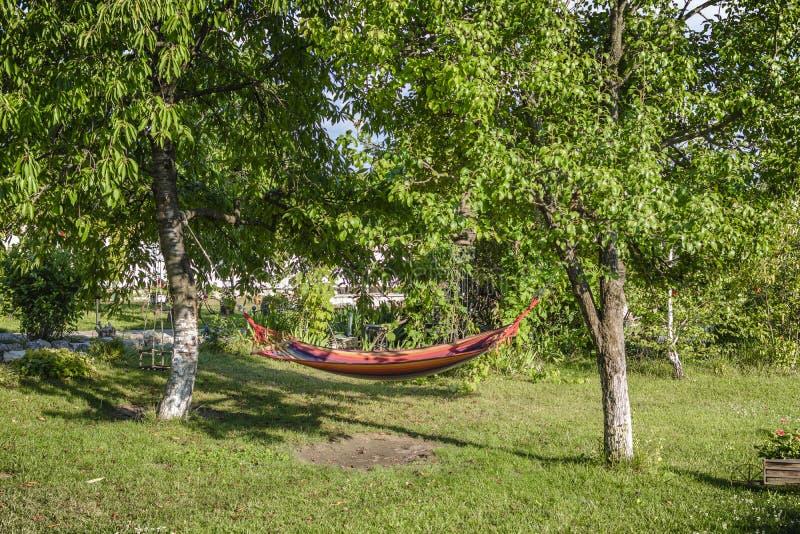 Hamac entre l'arbre deux dans un jardin photos libres de droits