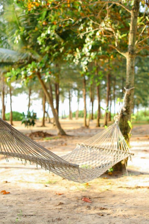 Hamaca blanca de mimbre vacía en la arena con los árboles en fondo foto de archivo