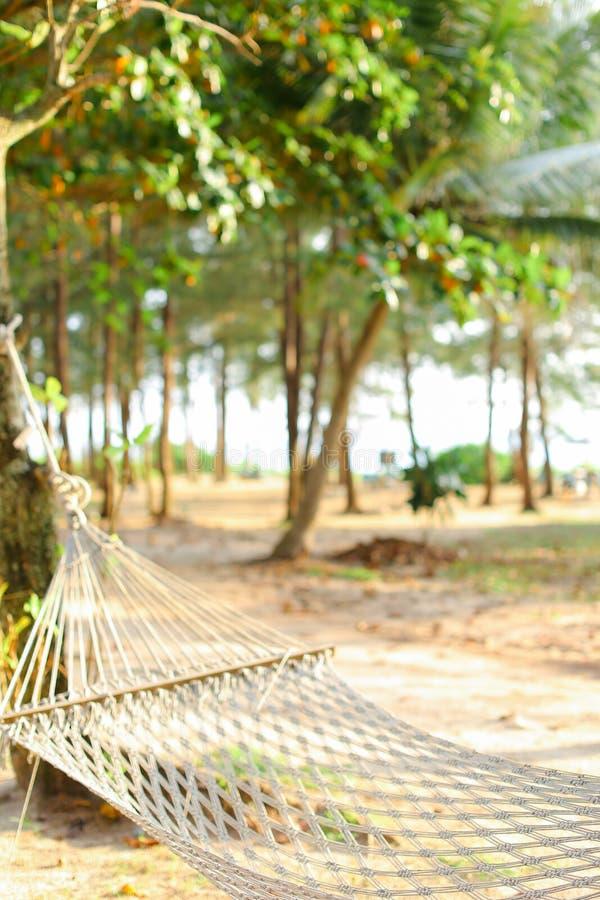 Hamaca de mimbre vacía con la arena y árboles en fondo imágenes de archivo libres de regalías