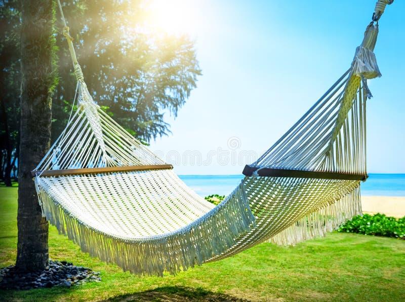 Hamaca entre dos palmeras en la playa imágenes de archivo libres de regalías