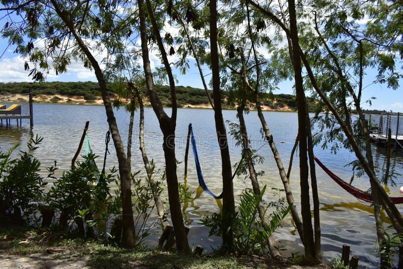 Hamacs dans la lagune de Lagoinha, Ceara, Brésil photo libre de droits