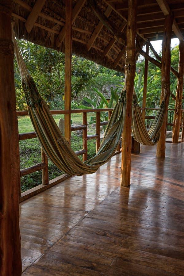 Hamacs en Amazone images libres de droits