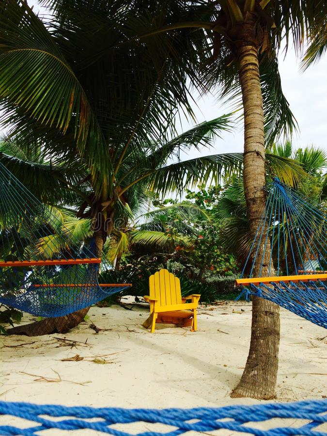 Hamacs et chaise, plage des Bahamas image libre de droits
