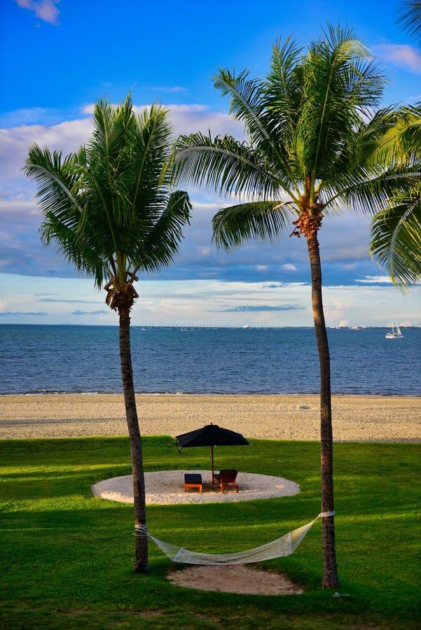 Hamak przy miejscowością nadmorską w Fiji zdjęcie royalty free