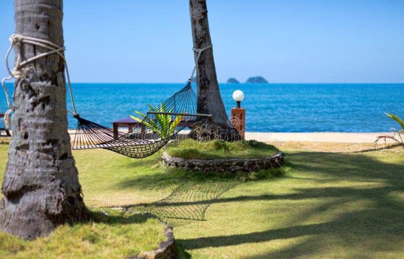Hamak zawiązywał między dwa palmami na tropikalnej wyspie. zdjęcie stock