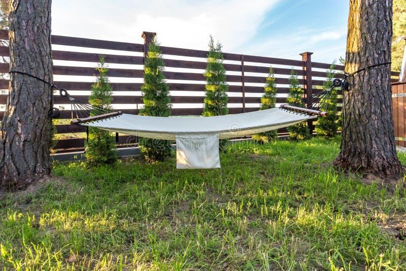 Hamak zawieszający między dwa sosnami w lato ogródzie dom na wsi przy zmierzchem fotografia royalty free