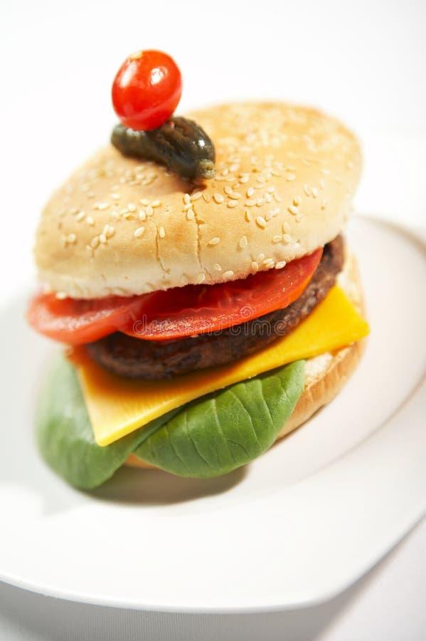 Download Hamburger - Aliments De Préparation Rapide Photo stock - Image du pain, couleur: 738120