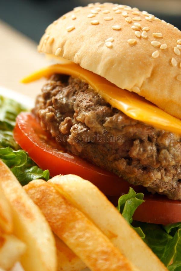 Free Hamburger And Fries Stock Photo - 8643880