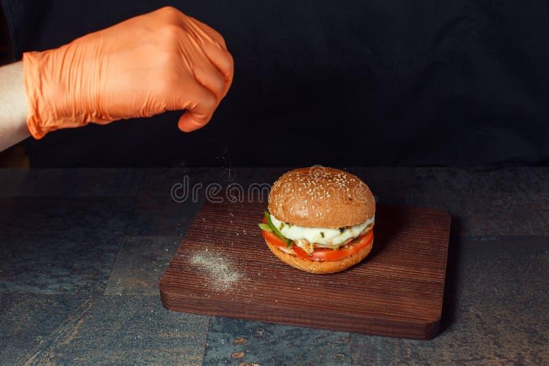 Hamburger avec le poulet et les épices image stock
