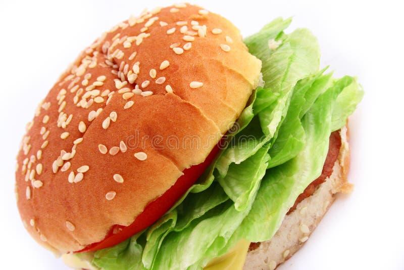 Hamburger Classico Del Manzo Immagine Stock