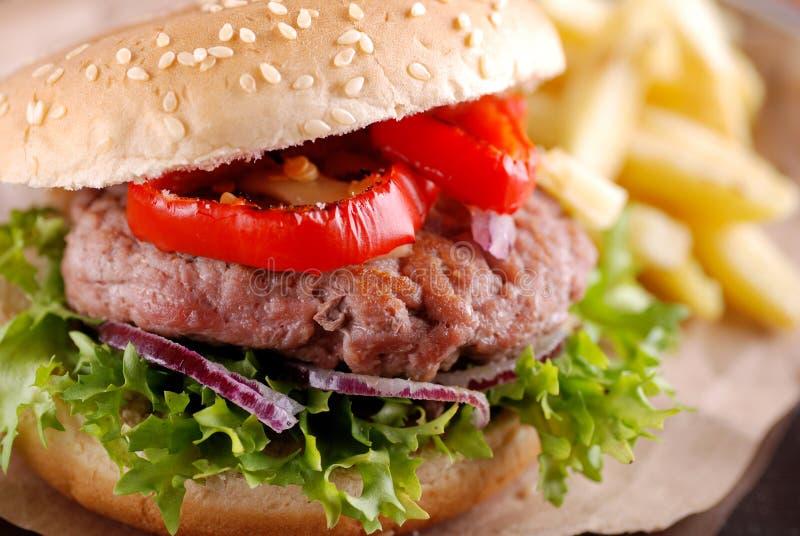 Hamburger con le fritture e l'insalata fotografie stock libere da diritti