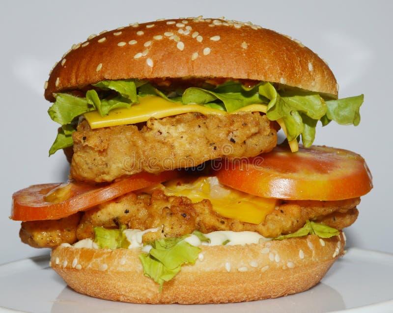 Hamburger de poulet - grand hamburger juteux sur le fond blanc - le base-ball photographie stock libre de droits