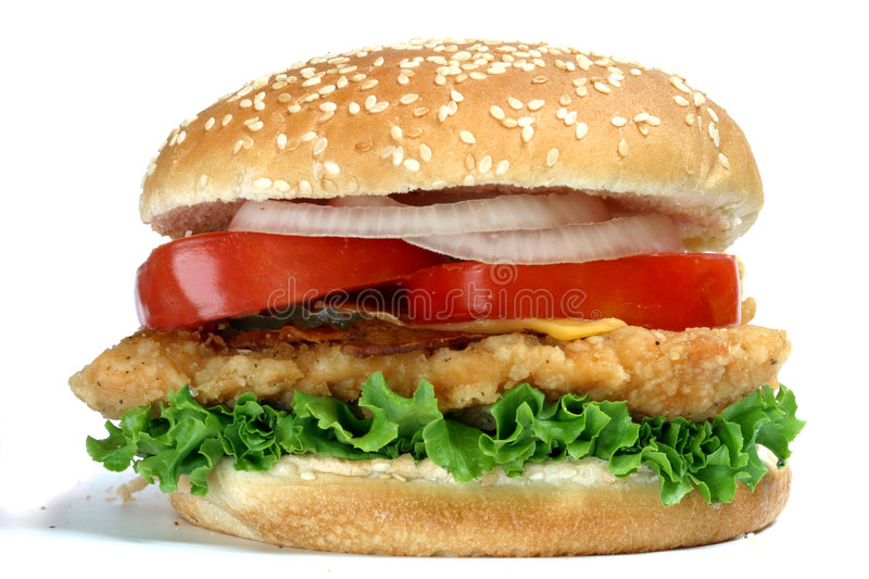 Hamburger del pollo fotografia stock