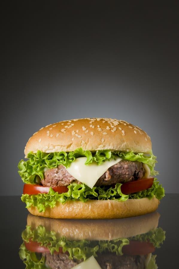 Hamburger delicioso imagem de stock royalty free