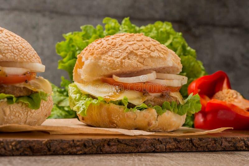 Download Hamburger Fait Maison De Veggie Photo stock - Image du sésame, hamburger: 76090626