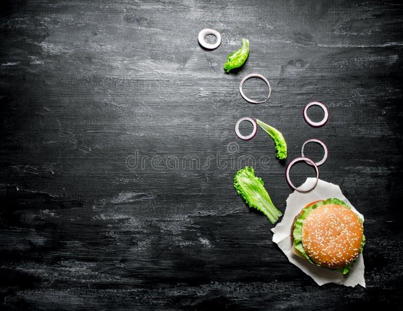 Hamburger fresco con le cipolle e le erbe Vista superiore fotografia stock libera da diritti