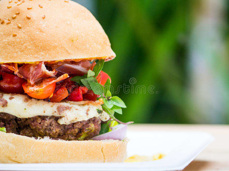 Hamburger gastronome images libres de droits