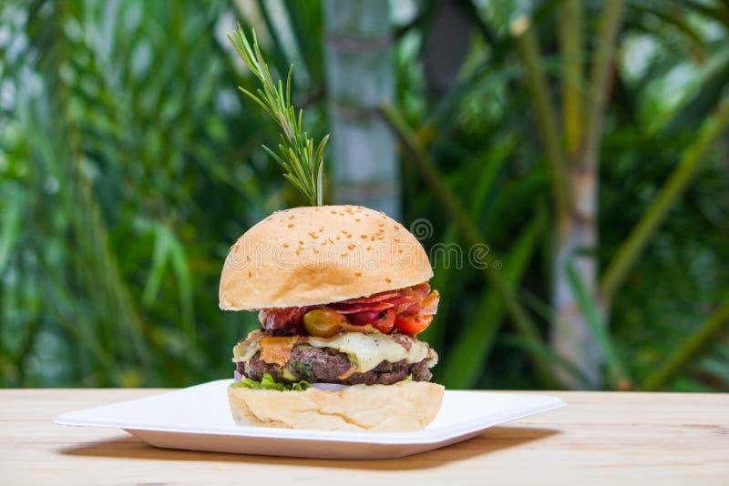Hamburger gastronome savoureux images libres de droits