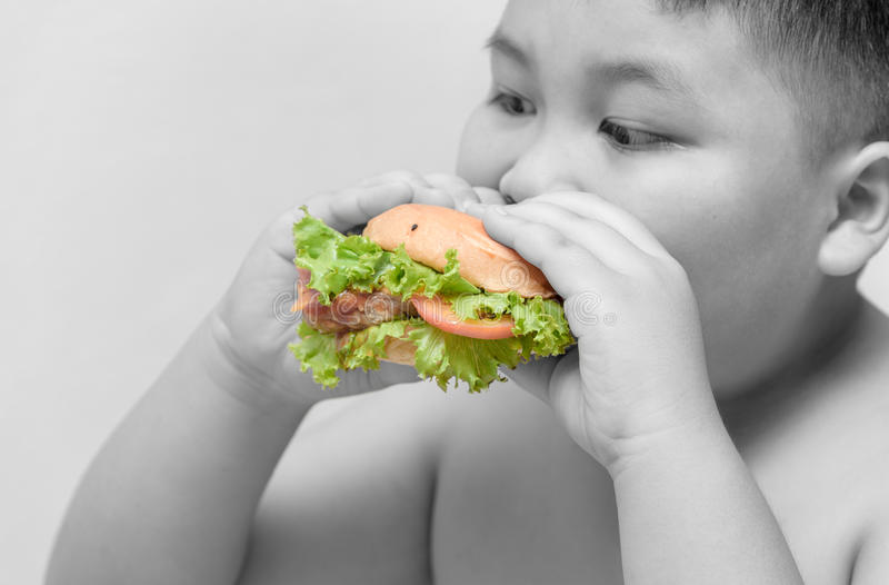 Hamburger op de zwaarlijvige Zwart-witte achtergrond van de jongenshand royalty-vrije stock afbeelding