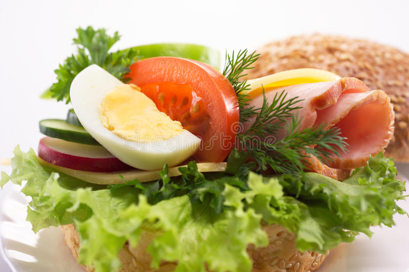 Download Hamburger with vegetables stock image. Image of closeup - 29490843