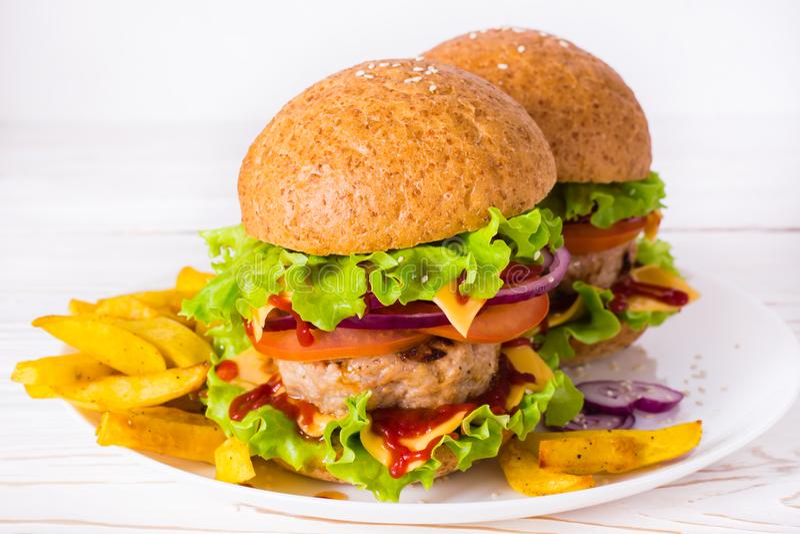 Hamburgery i francuzów dłoniaki na talerzu obraz stock