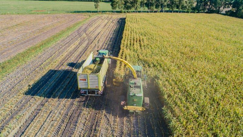Hamburgo, Alemanha - 4 de setembro de 2018: Colheita de milho, ceifeira de forragem na ação, caminhão do milho da colheita com o  foto de stock