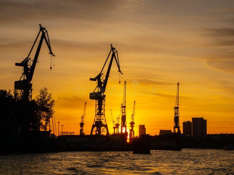 Hamburgo, Alemania El puerto, portacontenedores y las grúas imágenes de archivo libres de regalías