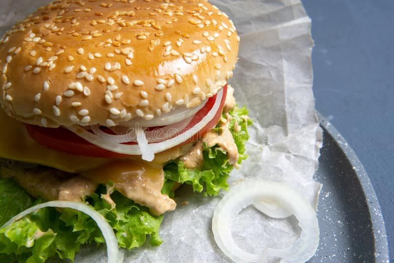 Hamburguer com rissol de carne, salada, uma fatia de tomate e de queijo, as cebolas e o molho com paprika em um bolo grelhado com fotografia de stock
