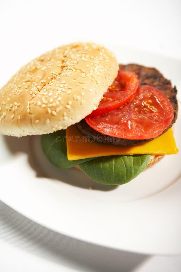 Hamburguer - comida rápida fotografia de stock royalty free