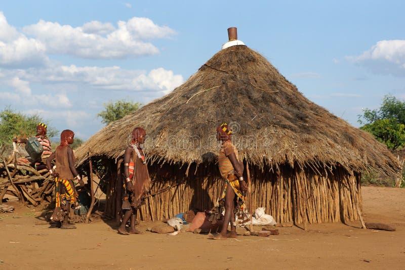 Hamer, Ethiopië, Afrika stock foto