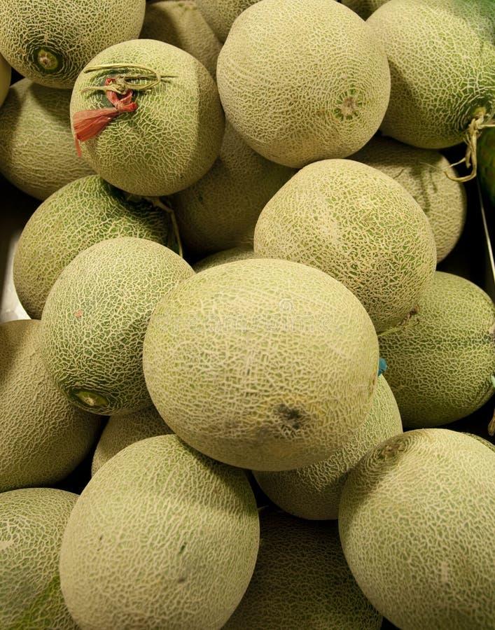 Hami Melone lizenzfreies stockfoto
