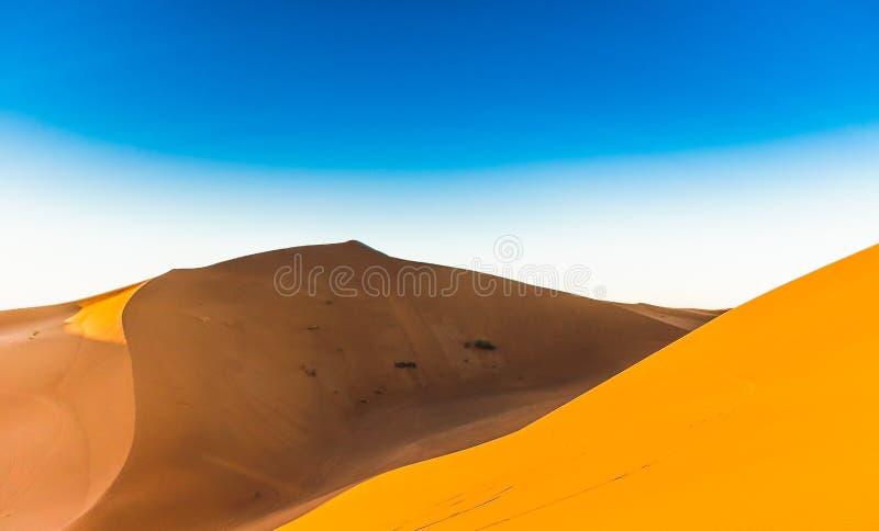 ` Hamid för tp M för ergChigaga dyn nästa i Marocko arkivbild